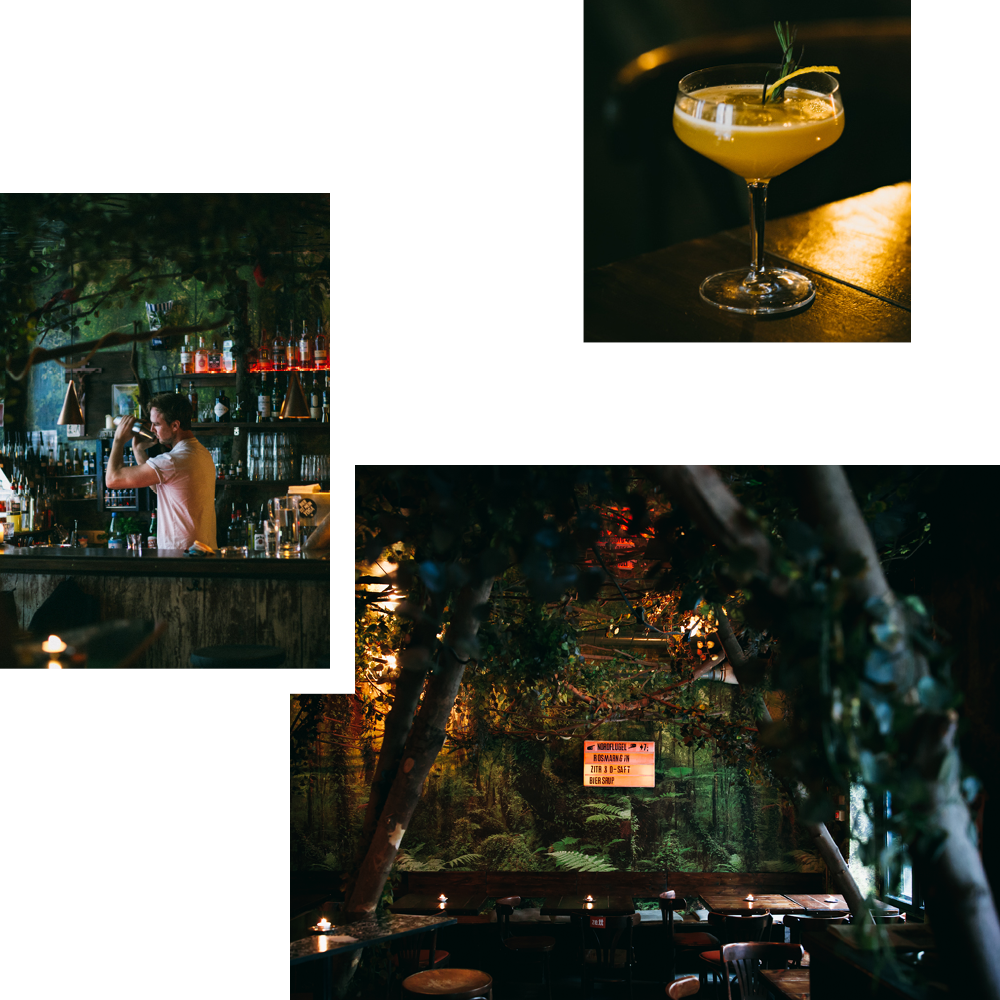 BECCA CRAWFORD RECOMMENDS: DSCHUNGEL BAR