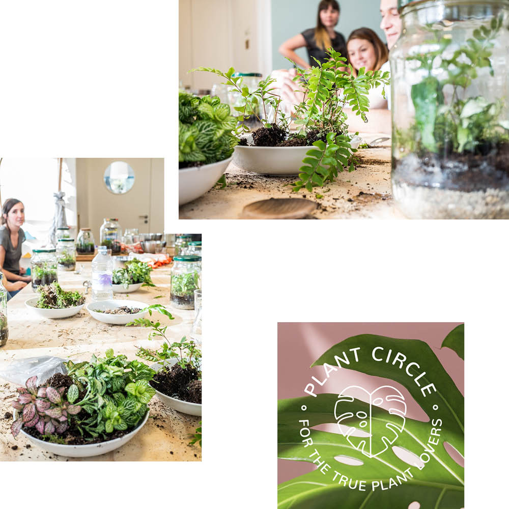 PLANT CIRCLE: EXOTIC PLANTS & GREEN THUMB ENHANCING EVENTS