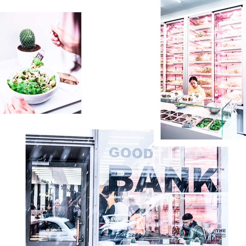 GOOD BANK — RESTAURANT TRIFFT INDOOR-FARMING