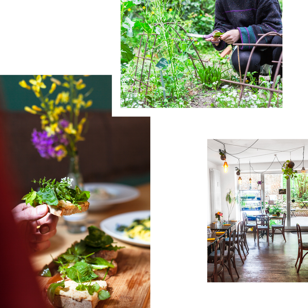 CHANYU XU RECOMMENDS: DINNER DIRECT FROM THE GARDEN AT CAFÉ BOTANICO