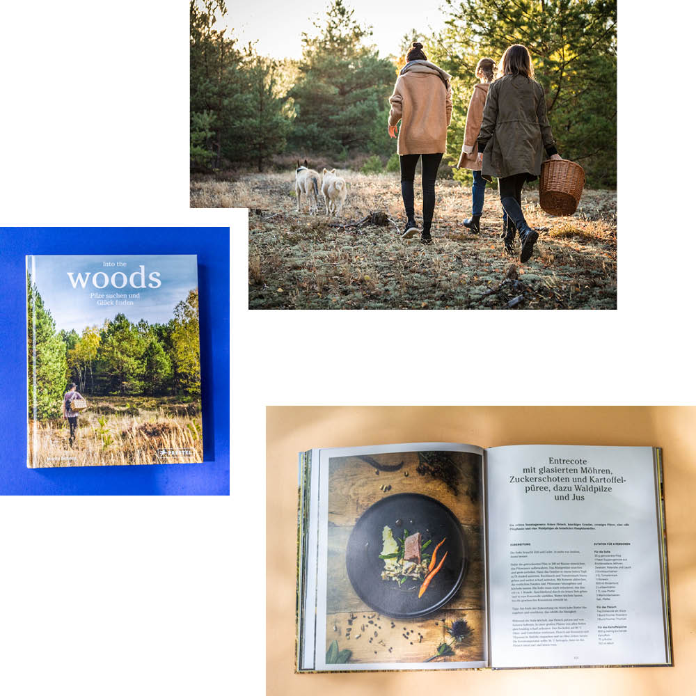 INTO THE WOODS — FIELD NOTES, RECIPES AND EXPERT TIPS FOR FORAGERS