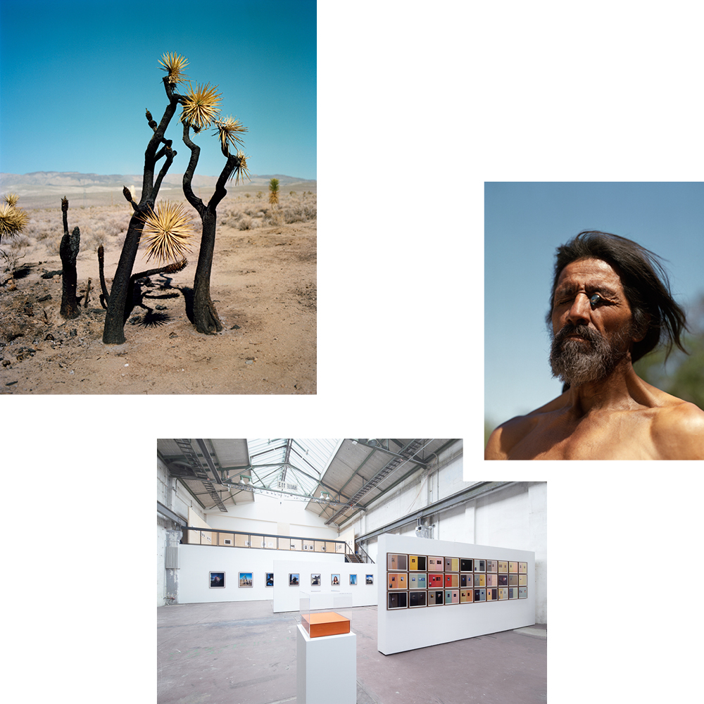 A VIEW INTO THE DISTANCE: DISCOVERING WORKS BY GREGORY HALPERN IN THE REINBECKHALLEN
