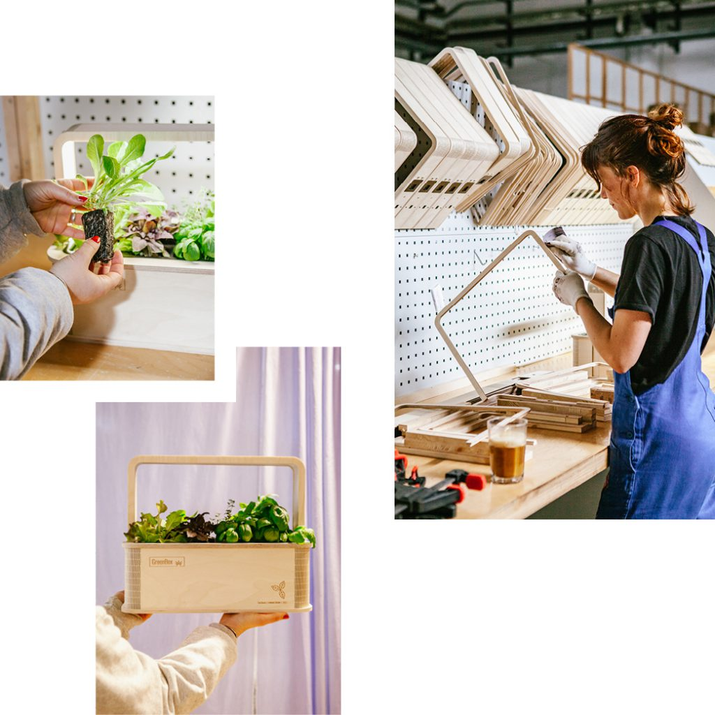BERLINGREEN GROW BOXES WITH LED AND APP — HARVEST FRESH HERBS, VEGETABLES AND FLOWERS AT HOME