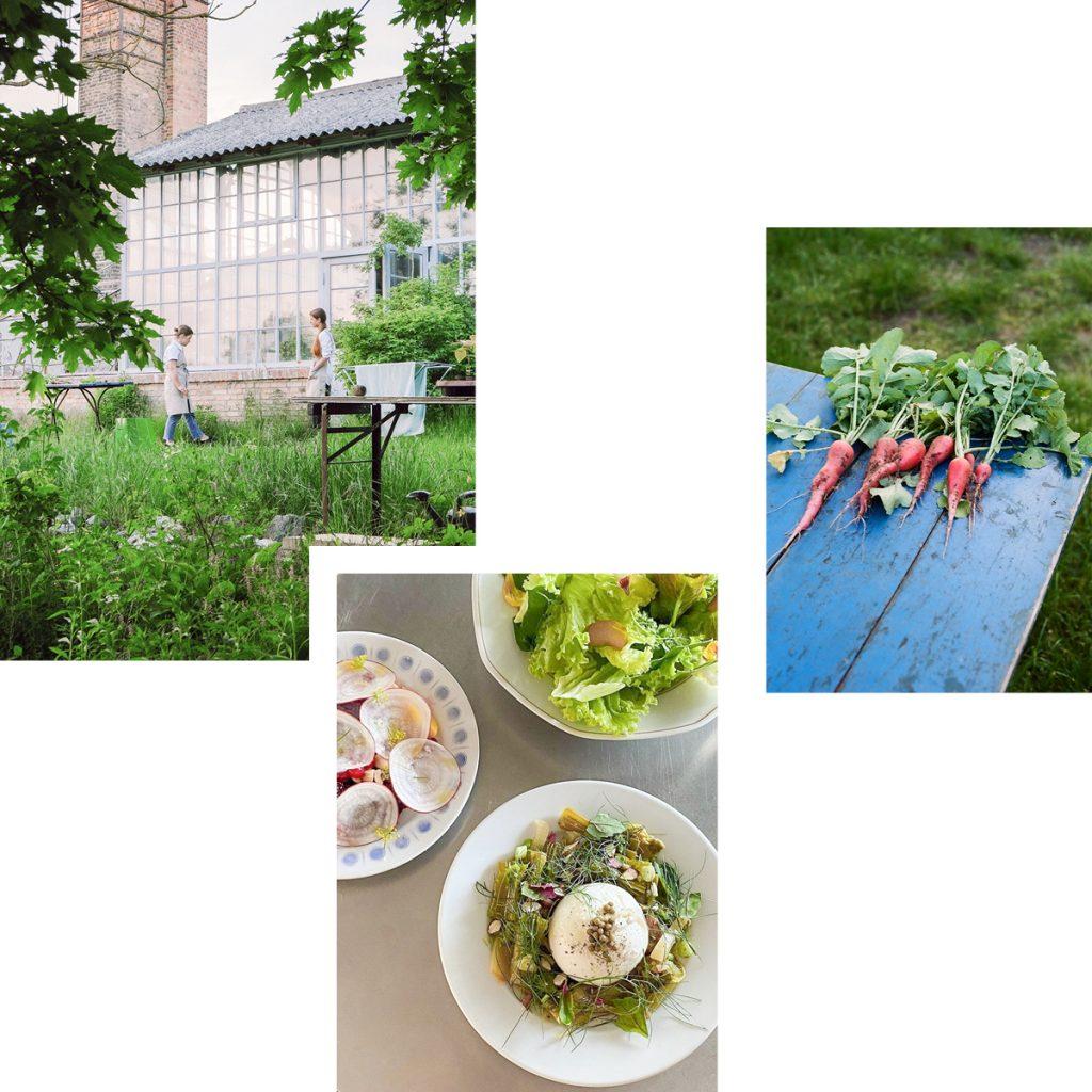GAIA: FARM-TO-TABLE DINING IN GERSWALDE'S GROSSER GARTEN