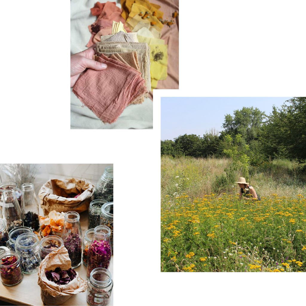 NATURE, PLANTS, COLORS — DISCOVER BERLIN'S GREEN SIDE WITH WALKS & WORKSHOPS BY STILL GARMENTS