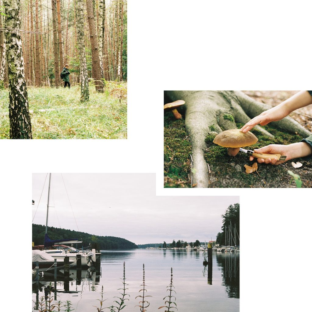 WINTERY WALKS, MUSHROOM PICKING AND A STEAMBOAT RIDE ON WERBELLINSEE — RECOMMENDED BY LAURA IRIONDO